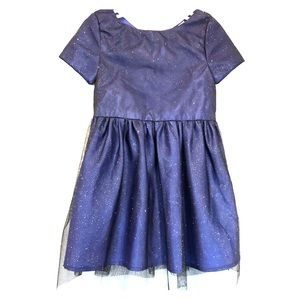 Sparkly Holiday Navy Dress